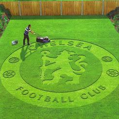 football geek