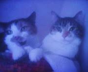 Suki and Zoe