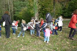 il bosco racconta - autunno 2010
