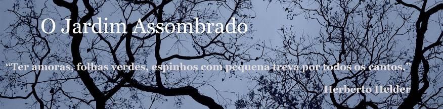 O JARDIM ASSOMBRADO