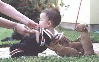 Funny Kid Pics-Don let me fall