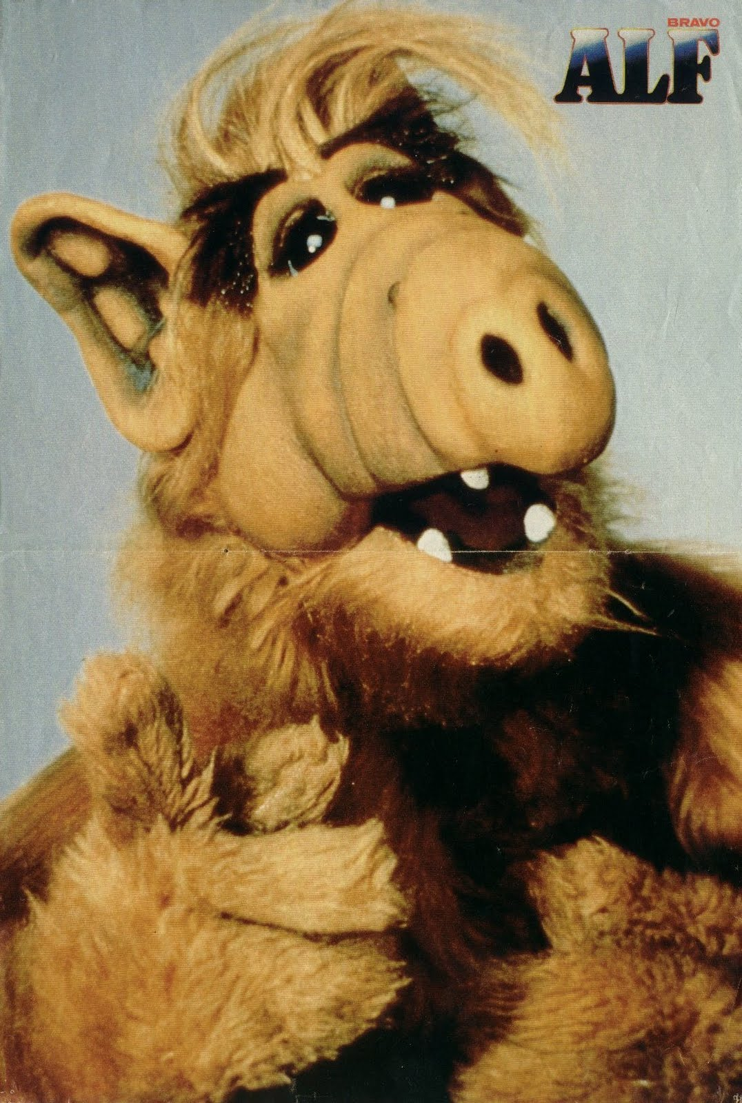 Magnetic Heart: remember alf? he's back! in pog form.