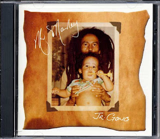 Cover Album of Damian Marley - Mr. Marley (Jr. Gong)