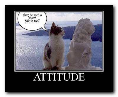 Funny Pictures With Captions Clean With Animals Funny Animals P...