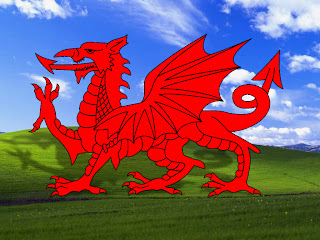 Welsh Dragon Bliss With Shadow