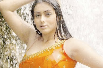 Namitha, south indian Hot beauty Pics 2