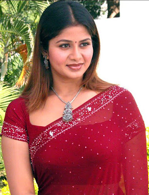 Hot Aunty Red Sequined Sari