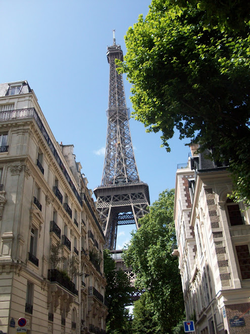 Seriously The Eiffel Tower from my street