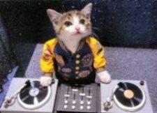 DJ Kiki Boy