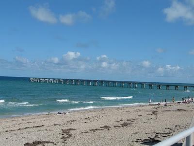 Heinz frenchie lake worth beach for Lake worth pier fishing
