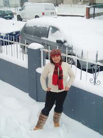 llego la nevada 2009
