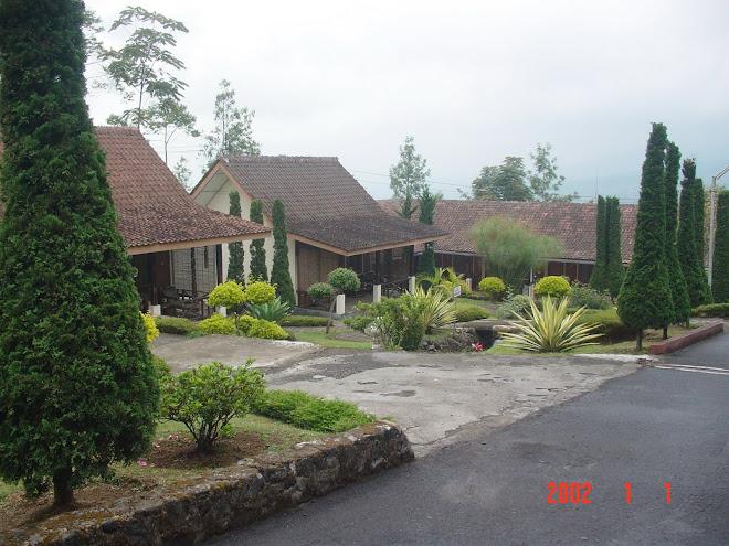 Gambar Guest House Pabrik Teh Wonosobo