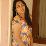Hema Hot Pictures