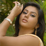 Namitha Sexy In Saree