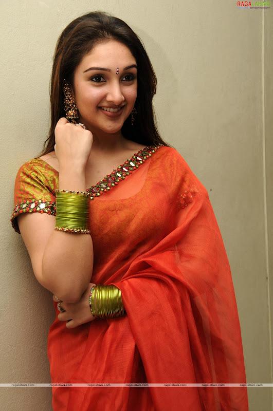 South indian cinema actress sex queen sridevi saree pictures