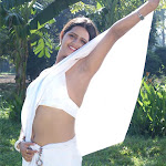Preethi Varma Hot Back Show In Saree
