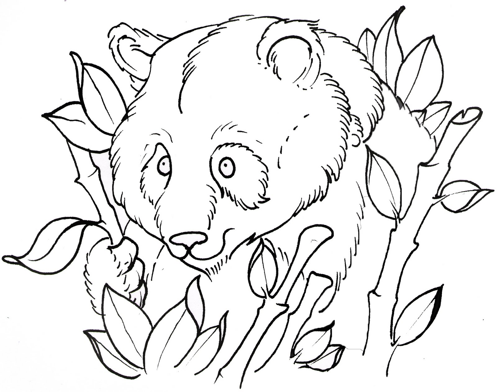 Traditional Tattoo Line Drawing : Joshmartinart