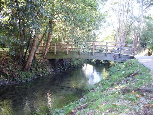 Mis paseos diarios junto al río Menexo (Pontevedra)