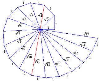 draw an spiral root | Meritnation.com