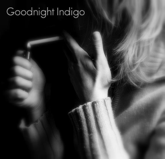 Goodnight Indigo