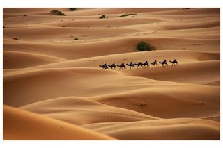 sahara desert one of the top ten travel wonders of Africa