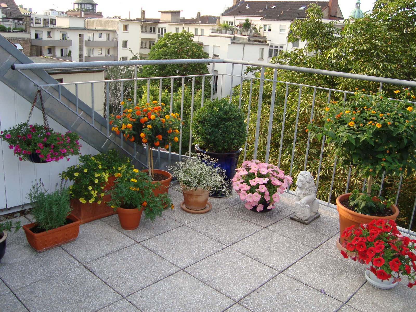 Gardening in mannheim germany lantana and butterfly bush for Apartment outdoor design