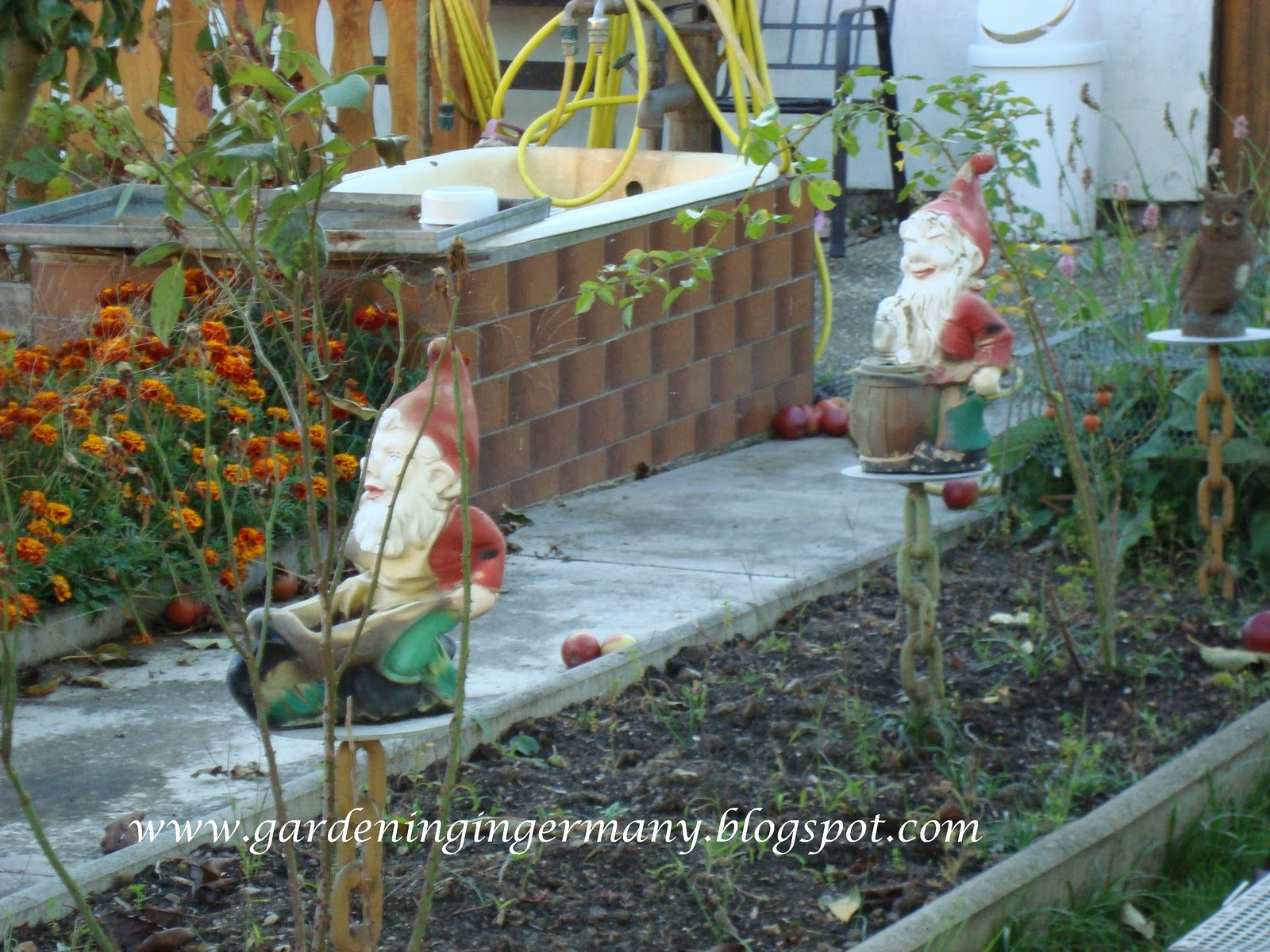 gardening in mannheim germany a gnome u0027s tale of discrimination