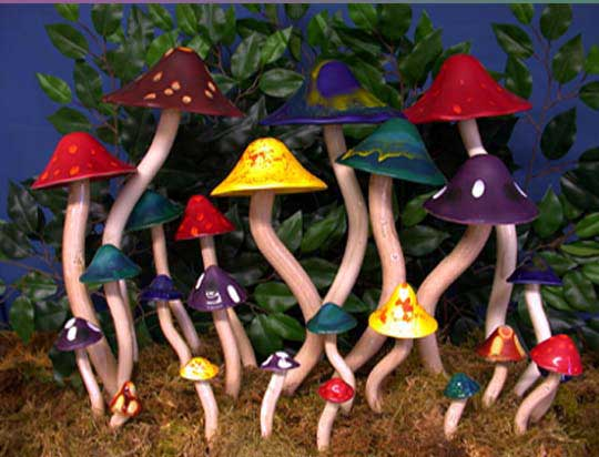Marvelous Mushrooms