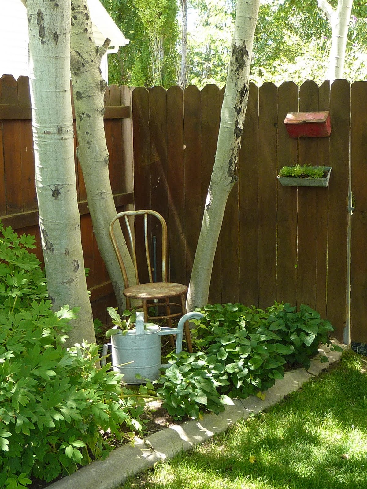 acannthus: Come with me through the garden gate...