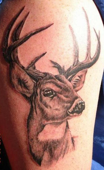 tattoo for girls designs photos deer head tattoos. Black Bedroom Furniture Sets. Home Design Ideas