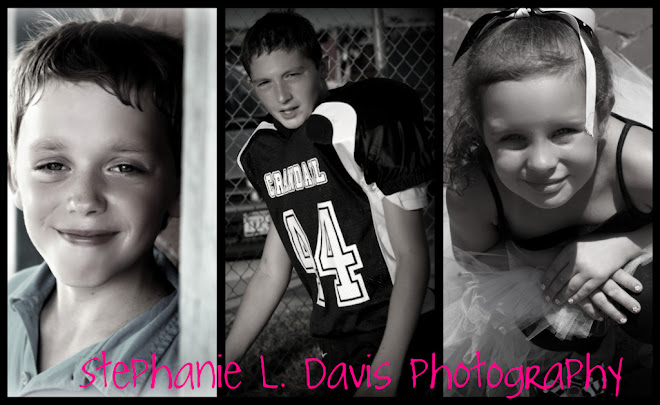 Stephanie L. Davis Photography