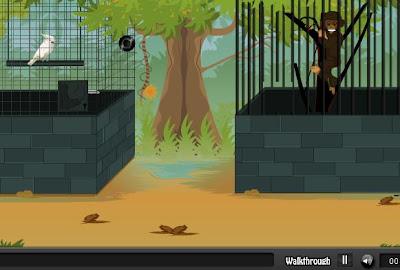 Zoo Escape walkthrough