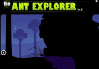 The Ant Explorer walkthrough