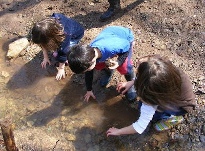 """muddy water essay Essay on """"a rainy day"""" complete essay for class 10, class 12 and graduation and other classes  small muddy pools of water are here and there and everywhere."""