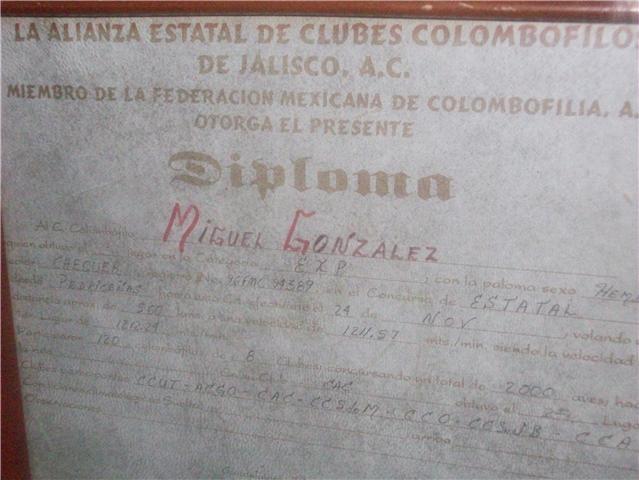 Diploma otorgado por la alianza de clubes Colombófilos de Jalisco A.C.