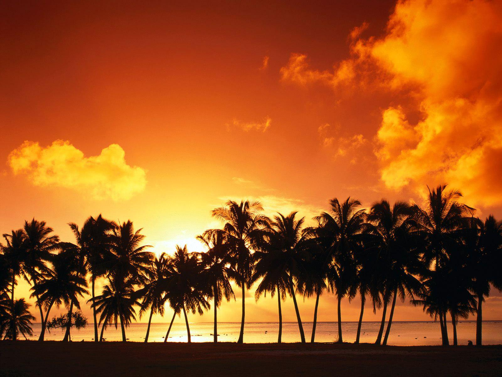 http://3.bp.blogspot.com/_bSB353YdZu8/S_Ah1FsCBAI/AAAAAAAAACs/ScGrQUlvdMM/s1600/Sunset-original.jpg