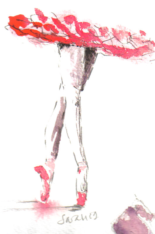 Image hotlink - 'http://3.bp.blogspot.com/_bSNFV-41TSk/SoWYjc-6ygI/AAAAAAAAL0w/LhSU_A6v2as/s1600/red%2Bwatercolour%2Bpointe.jpg'