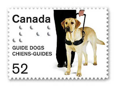 Guide Dogs for the Blind | Welcome to Guide Dogs for the Blind