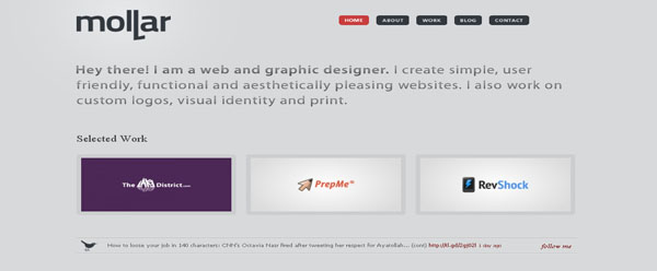 rui molar web and graphic designer