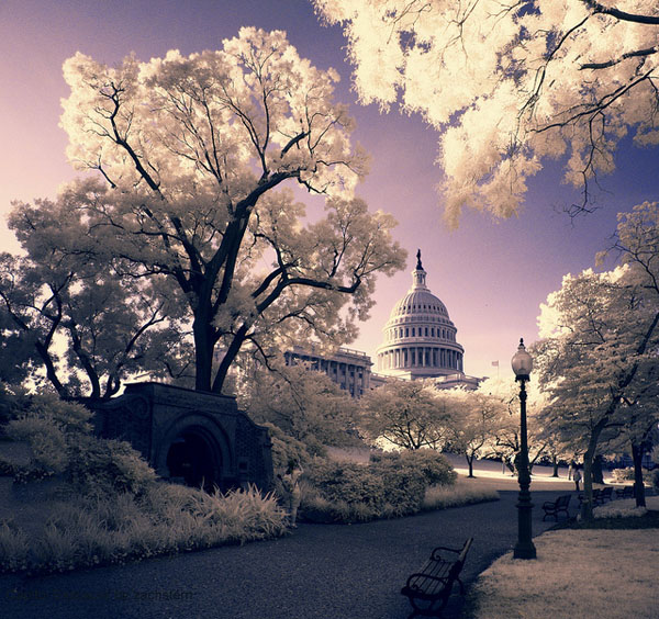 1 Digital Infrared Photography 25 Great IR Shots