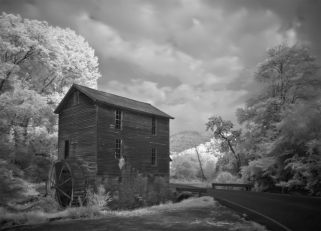 11 Digital Infrared Photography 25 Great IR Shots