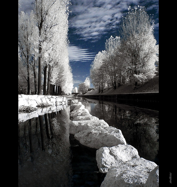 24 Digital Infrared Photography 25 Great IR Shots