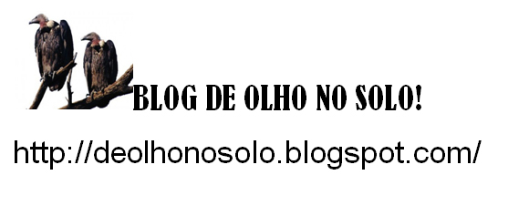 Blog De olho no solo!