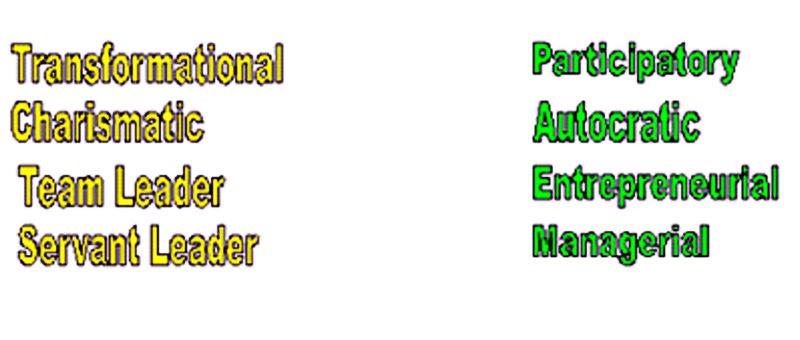 transformational leadership disadvantages