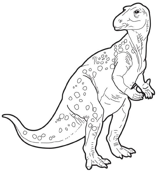 [iguanodon.jpg]