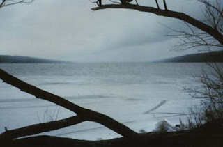 view of Cayuga Lake from Stewart Park in winter