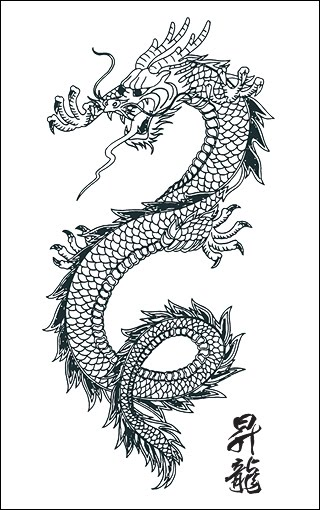 Japanese Dragon Tattoo Design. I got this for my mom.