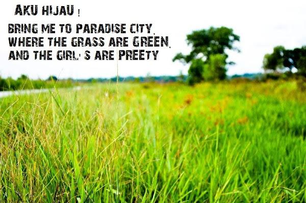 aku hijau