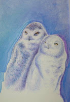 Blue Owls Copyright Jennifer Rose Phillip