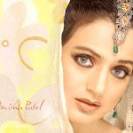 Bollywood Dream Girl Amisha